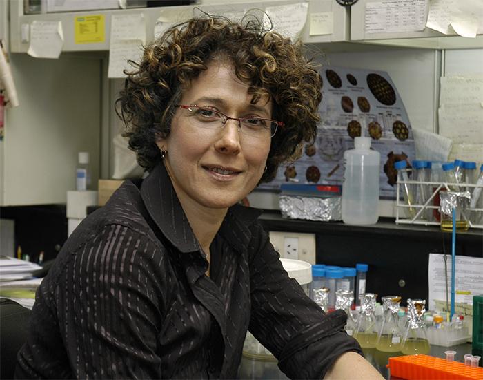 """Premio internacional L'Oréal-UNESCO """"Por las Mujeres en la Ciencia"""" para investigadora argentina"""