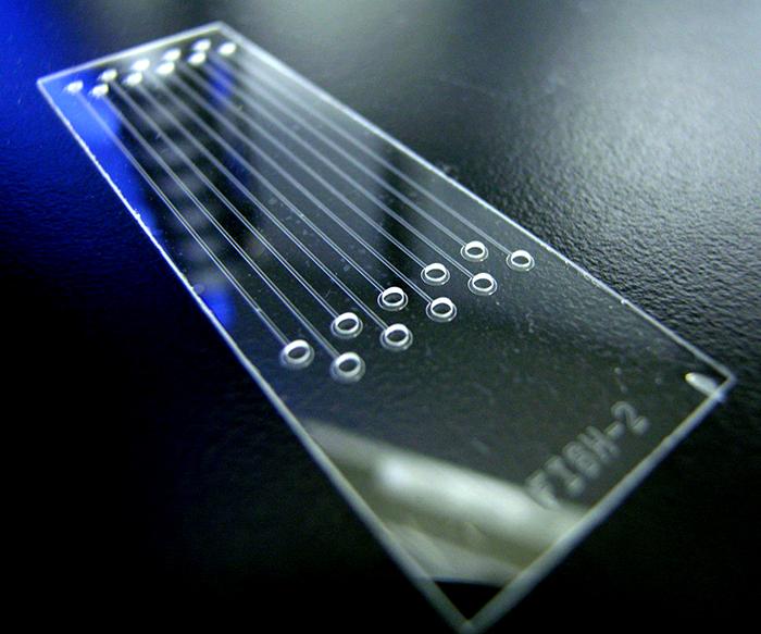 El laboratorio en un chip: avance de científicos argentinos
