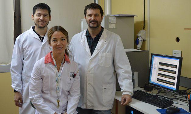 Descubren un posible arsenal antibiótico en la piel de una rana patagónica