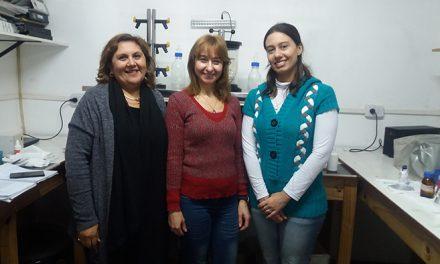"""Investigan en Tucumán posibles """"aspirinas"""" de la Puna"""