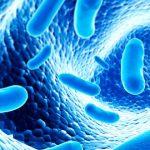"""Las bacterias beneficiosas o """"probióticos"""" pueden modular patologías de la piel."""