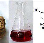 Los científicos de Córdoba desarrollaron una técnica limpia para extraer compuestos bioactivos del maní y del sésamo.