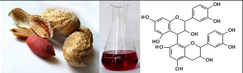Desarrollan técnica limpia para extraer compuestos bioactivos del maní y del sésamo
