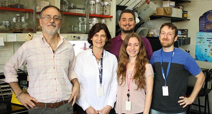 Científicos argentinos participan de iniciativa internacional para estudiar el efecto de la dieta sobre el Alzheimer