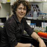 """Por sus importantes descubrimientos sobre los mecanismos de multiplicación del virus del dengue,  la Dra. Andrea Gamarnik,  jefa del Laboratorio de Virología Molecular de la Fundación Instituto Leloir, recibió en 2016 el Premio internacional L'Oréal-UNESCO """"Por las Mujeres en la Ciencia""""."""