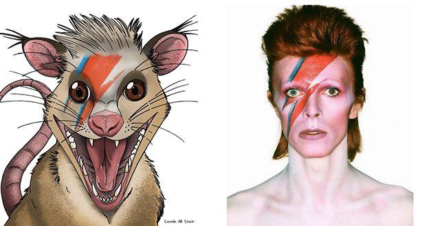 Paleontólogos honran a David Bowie tras descubrir un mamífero que convivió con dinosaurios