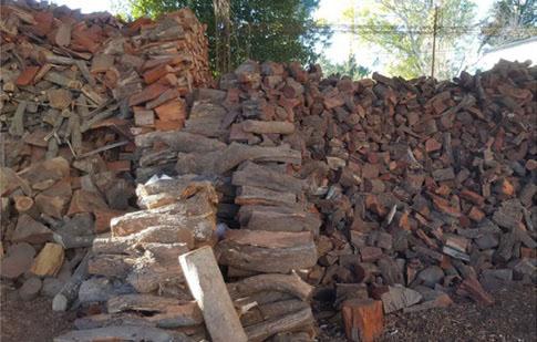 Preocupa a los científicos el uso de maderas nativas como leña
