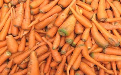 FOTO zanahorias