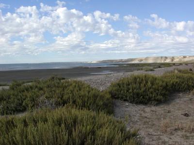 foto mar argentino 1