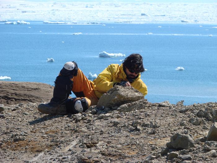 Descubren los fósiles de mamíferos más antiguos de la Antártida
