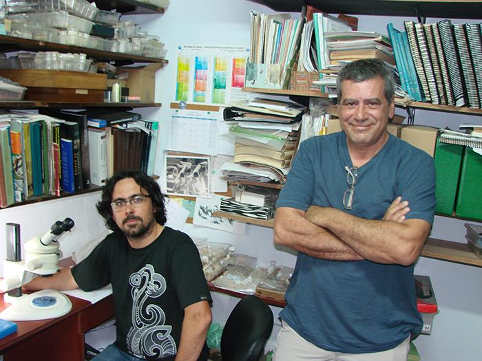 Resuelven parentesco de mamíferos antigüos de América del Sur