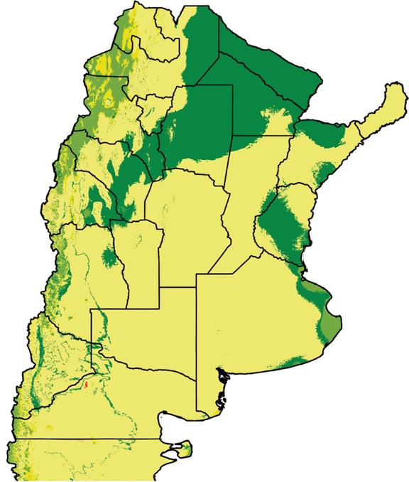 En 2050 se reduciría en Argentina la distribución geográfica del vector del Chagas