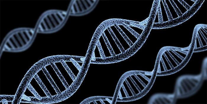 Alertan que los países industrializados avanzan en el patentamiento de genes