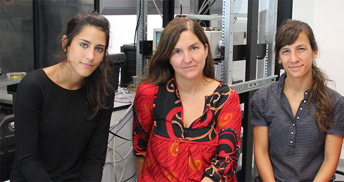 Argentinos descubren mecanismo clave para la formación de la memoria
