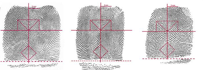 Demuestran patrones diferentes en huellas digitales de hombres y mujeres
