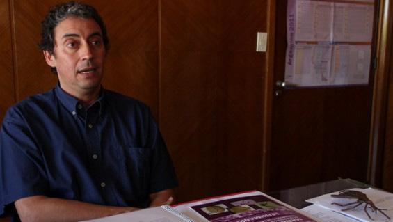 El medicamento más usado en Chagas no beneficia el corazón de quienes ya lo tienen dañado