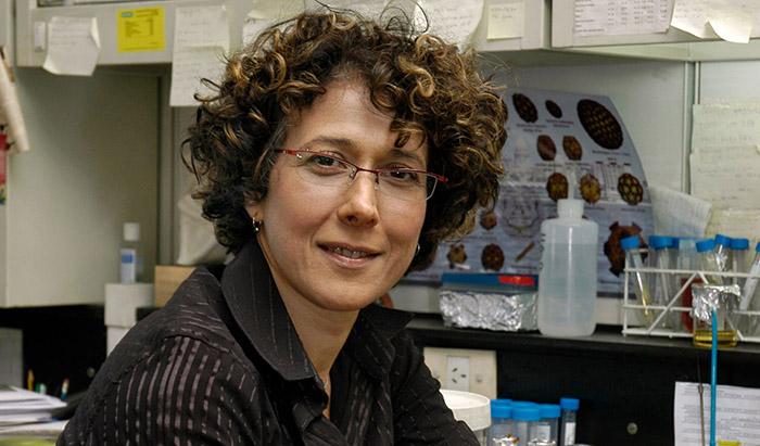 En el Día Mundial de la Mujer, la ciencia sigue en deuda con ellas