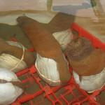 FOTO 1 Almeja para sushi