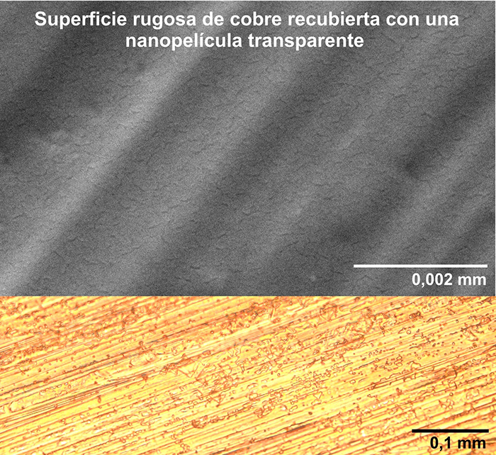 El orégano puede prolongar la vida de componentes electrónicos