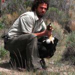 El veterinario jefe del ECOparque Interactivo BA (Ex Zoo de Buenos Aires), Guillermo Wiemeyer,  y un cóndor andino.