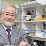 El doctor Yoshinori Ohsumi es profesor del Instituto de Tecnología de Tokio. Es el segundo Nobel de Medicina que recibe solo el galardón en lo que va del siglo, después del británico Robert Edwards.   Créditos: Instituto de Tecnología de Tokio.