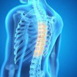 El avance científico sienta bases para mejorar el diagnóstico de la osteoporosis.