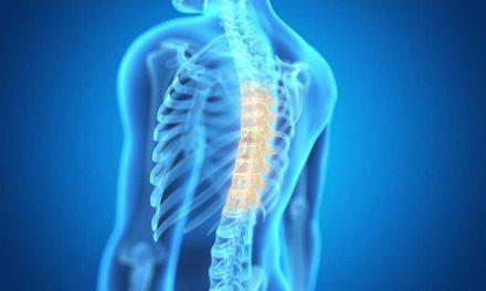 Desarrollan software para mejorar el diagnóstico de la osteoporosis