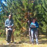 Dos de los autores del estudio, Victoria Lantschner, investigadora del Conicet en el Grupo de Ecología de Poblaciones de Insectos de la Estación Experimental Agropecuaria Bariloche del INTA, y Juan Corley, del Conicet, el INTA y la Universidad Nacional del Comahue, en Bariloche.