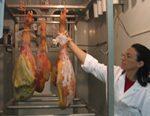 Investigadores de España y de Argentina identificaron en jamones curados españoles fragmentos de proteínas que inhiben al microorganismo de la listeriosis, una enfermedad transmitida por alimentos.