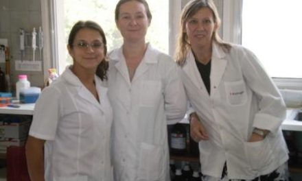 Identifican mecanismo clave asociado a la adherencia anormal de la placenta al útero