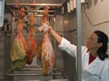El jamón crudo, fuente de un posible conservante natural contra una bacteria peligrosa