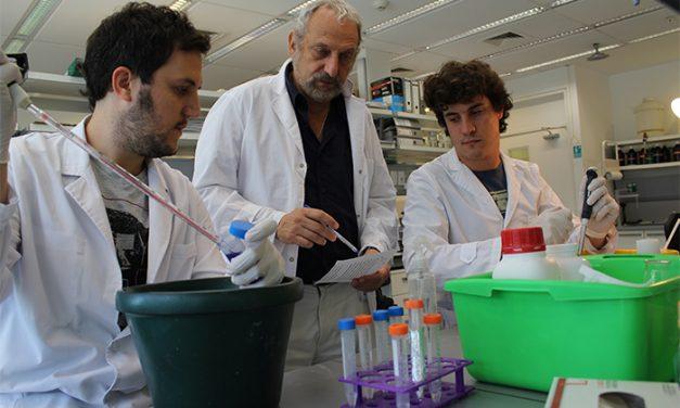 """""""La ciencia básica es un paso clave para curar muchas enfermedades"""""""
