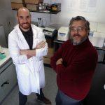 Juan Ignacio Bertucci y Fabian Canosa, investigadores del CONICET y de la UNSAM, determinaron condiciones que podrían acelerar el crecimiento del pejerrey.