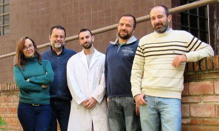 Científicos de Rosario desarrollan un parche adhesivo para tratar hongos de la boca