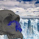 Los investigadores realizaron una reconstrucción digital de la anatomía nasal interna de la nariz de humanos y neandertales.