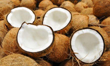 Investigan el uso del aceite de coco contra el Alzheimer