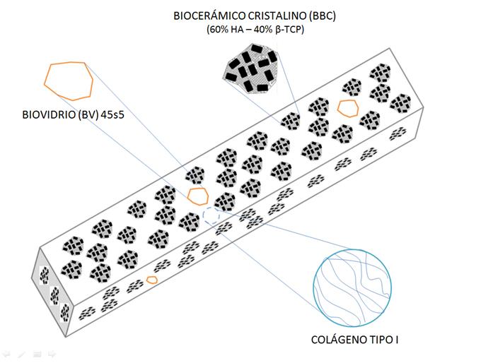 Crean biomaterial para la regeneración del tejido óseo