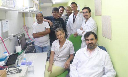 Identifican capacidad de bacteria para prevenir infecciones