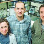 """Identifican un nuevo """"truco"""" genético de las bacterias que detectan oro"""