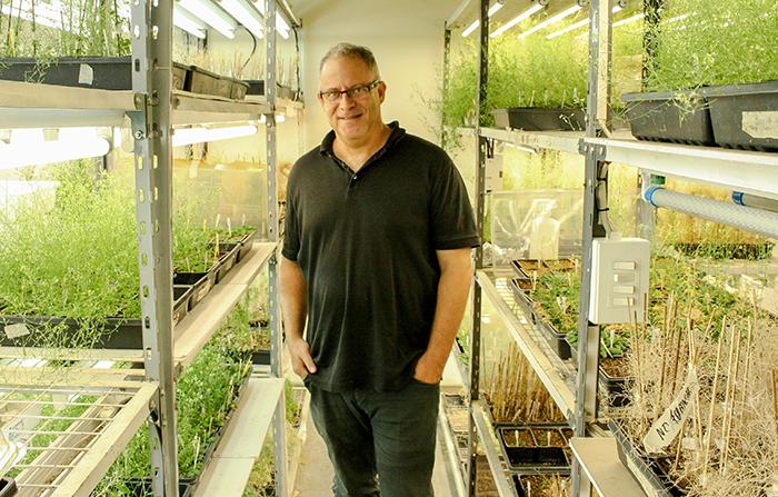 ¿Qué tiene que ver el jet lag con los rindes de cultivos? Un científico argentino cree tener la respuesta.