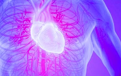 Científicos platenses ahondan en las bases genéticas de un misterio del corazón de casi 150 años