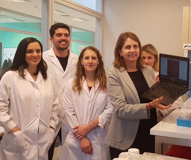 Exploran alternativas a los experimentos de laboratorio con animales