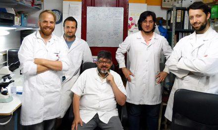 Identifican una proteína clave para la expansión de comunidades de microbios