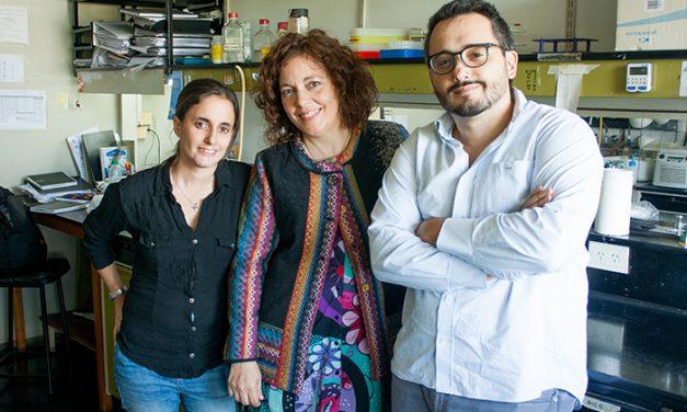Científicos argentinos desarrollan promisorio enfoque terapéutico para el cáncer de mama y de ovario