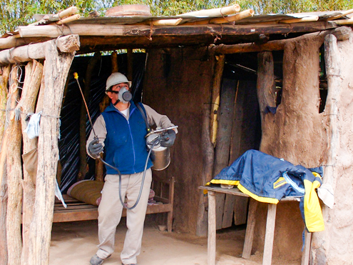 Logran controlar al vector delChagasen comunidades indígenas del Chaco