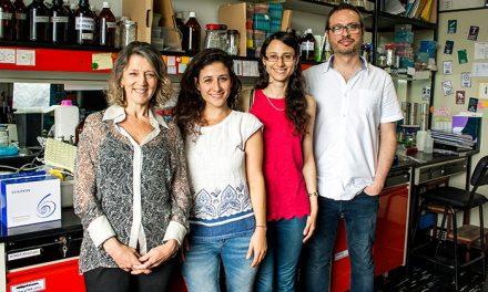 Estudio argentino identifica un potencial blanco terapéutico contra la brucelosis