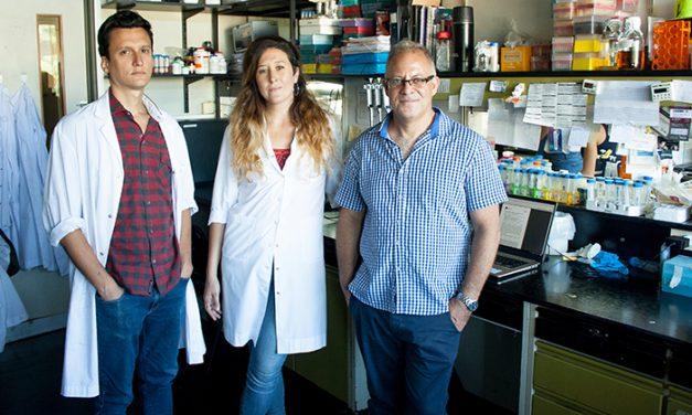 """Científicos argentinos buscan """"engañar"""" a los cultivos para que crezcan en latitudes ajenas"""