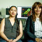 Científicos argentinos identifican cómo se relacionan las mutaciones en 47 tipos de cáncer