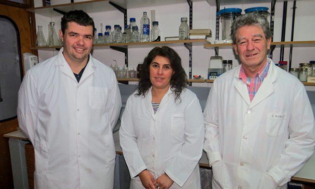 Reportan por primera vez en Argentina y la región la muerte de ganado vacuno por una planta venenosa
