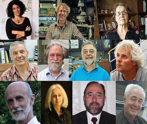 Once investigadores argentinos se incorporan a la Academia de Ciencias de América Latina